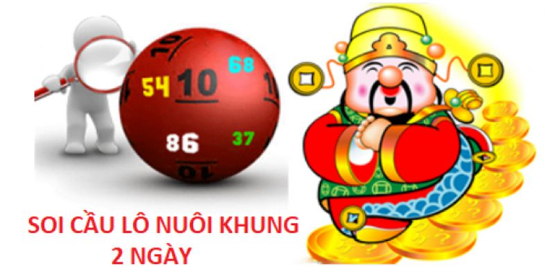 cach nuoi lo khung | qh88